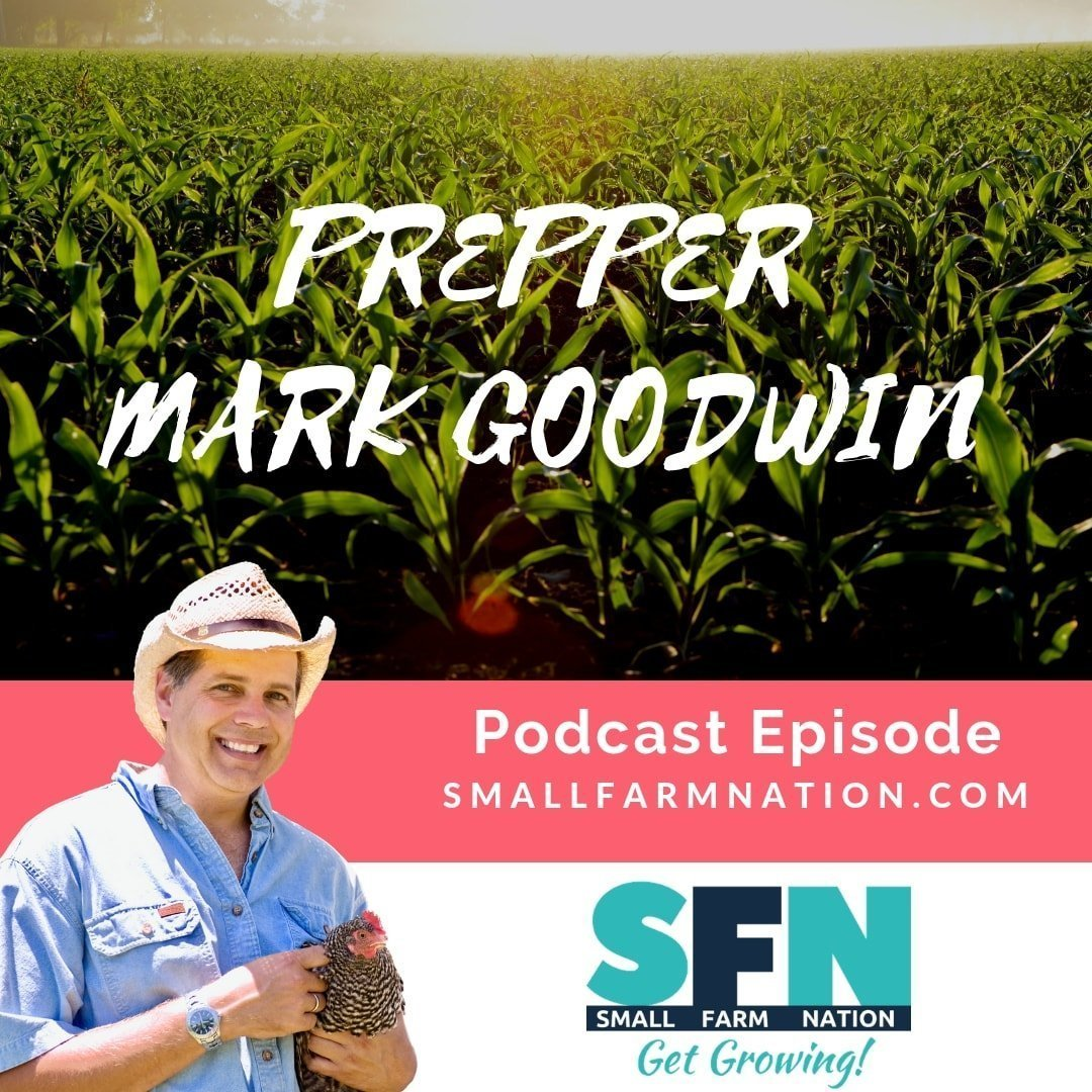 Mark Goodwin | Prepper | Christian Author