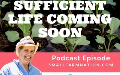 SSL0: Self-Sufficient Life Coming Soon [PODCAST]