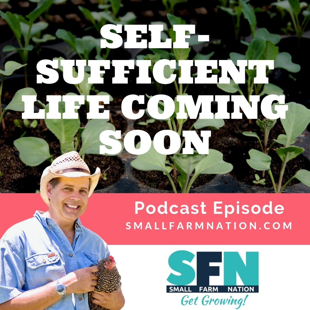 Self-Sufficient Life Coming Soon-min