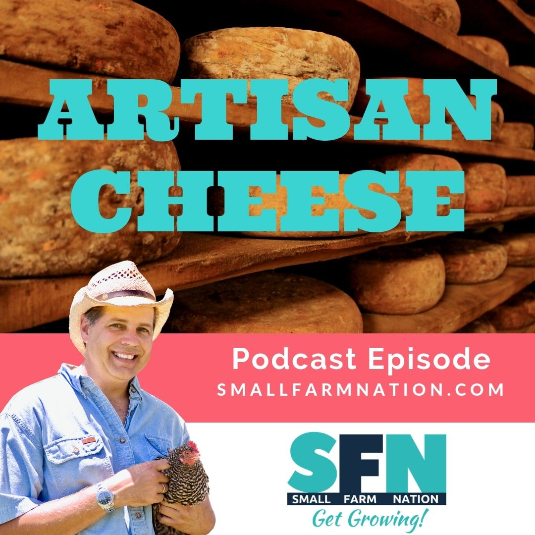 Artisan Cheese | Raising Goats | Homesteading
