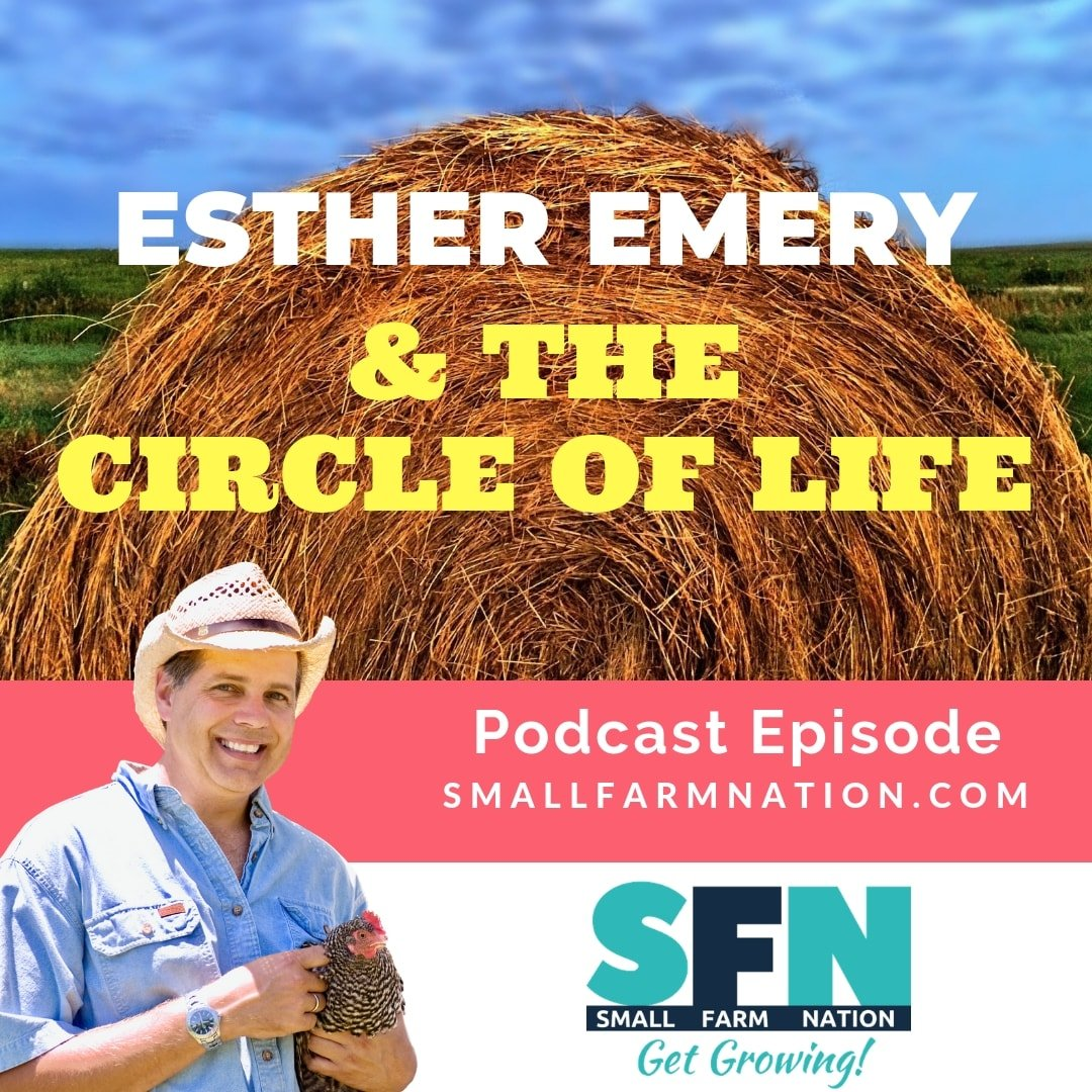Esther Emery & The Circle of Life|Off-Grid | Homesteading