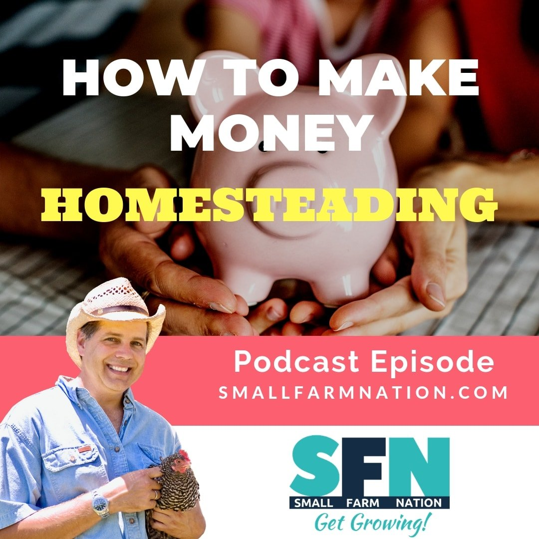 How to Make Money Homesteading | Homesteading