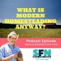What is Modern Homesteading Anyway-min