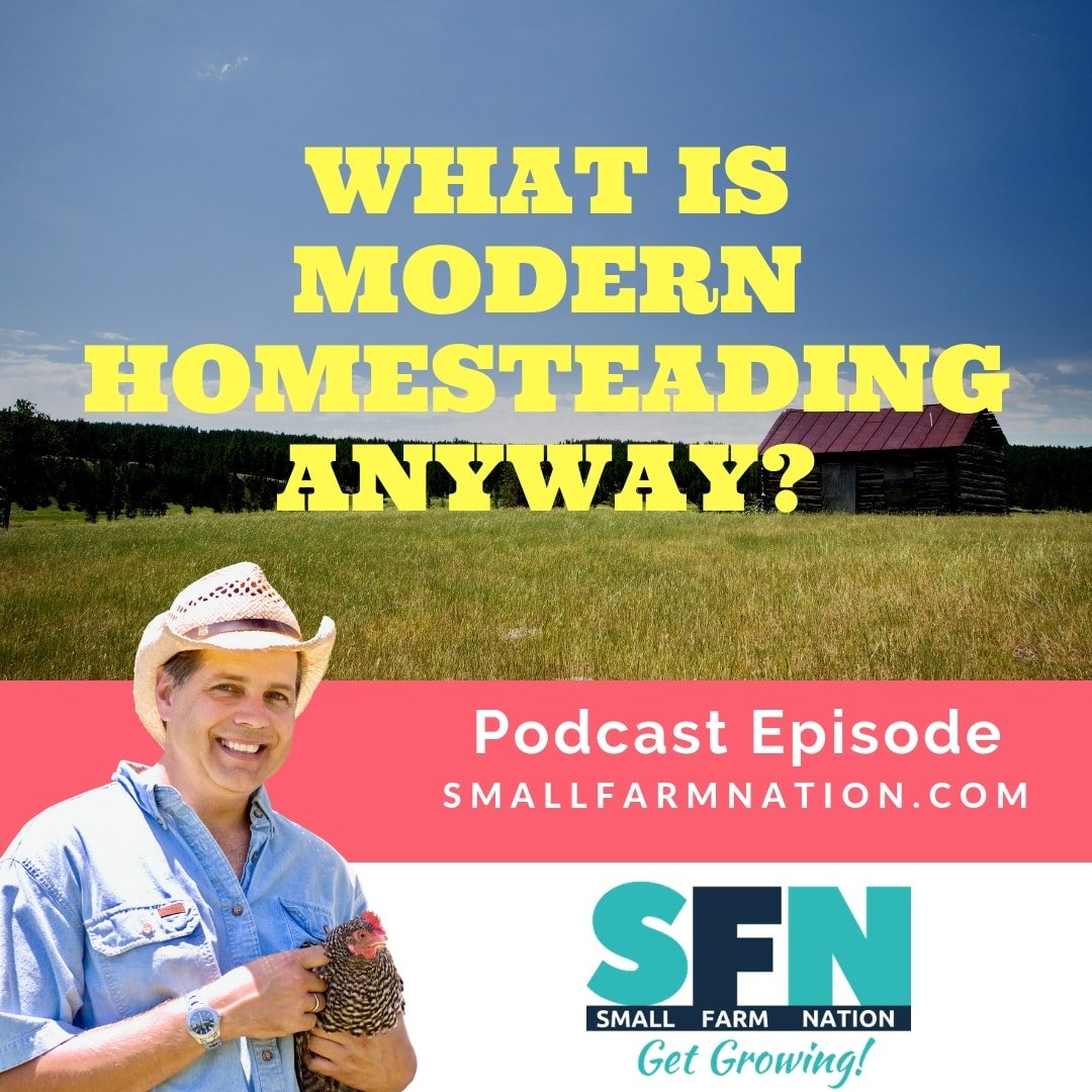 What is Modern Homesteading Anyway? | Homesteading | Prepping
