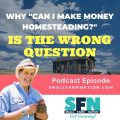 Why Can I Make Money Homesteading is the Wrong Question-min
