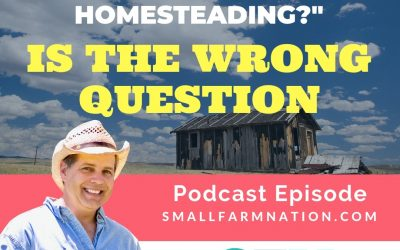 "Why ""Can I Make Money Homesteading?"" is the Wrong Question 