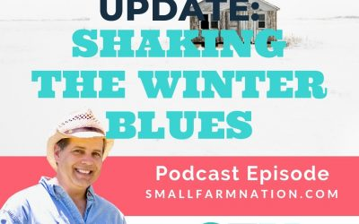 Farmstead Update: Shaking the Winter Blues | Homesteading | Farming