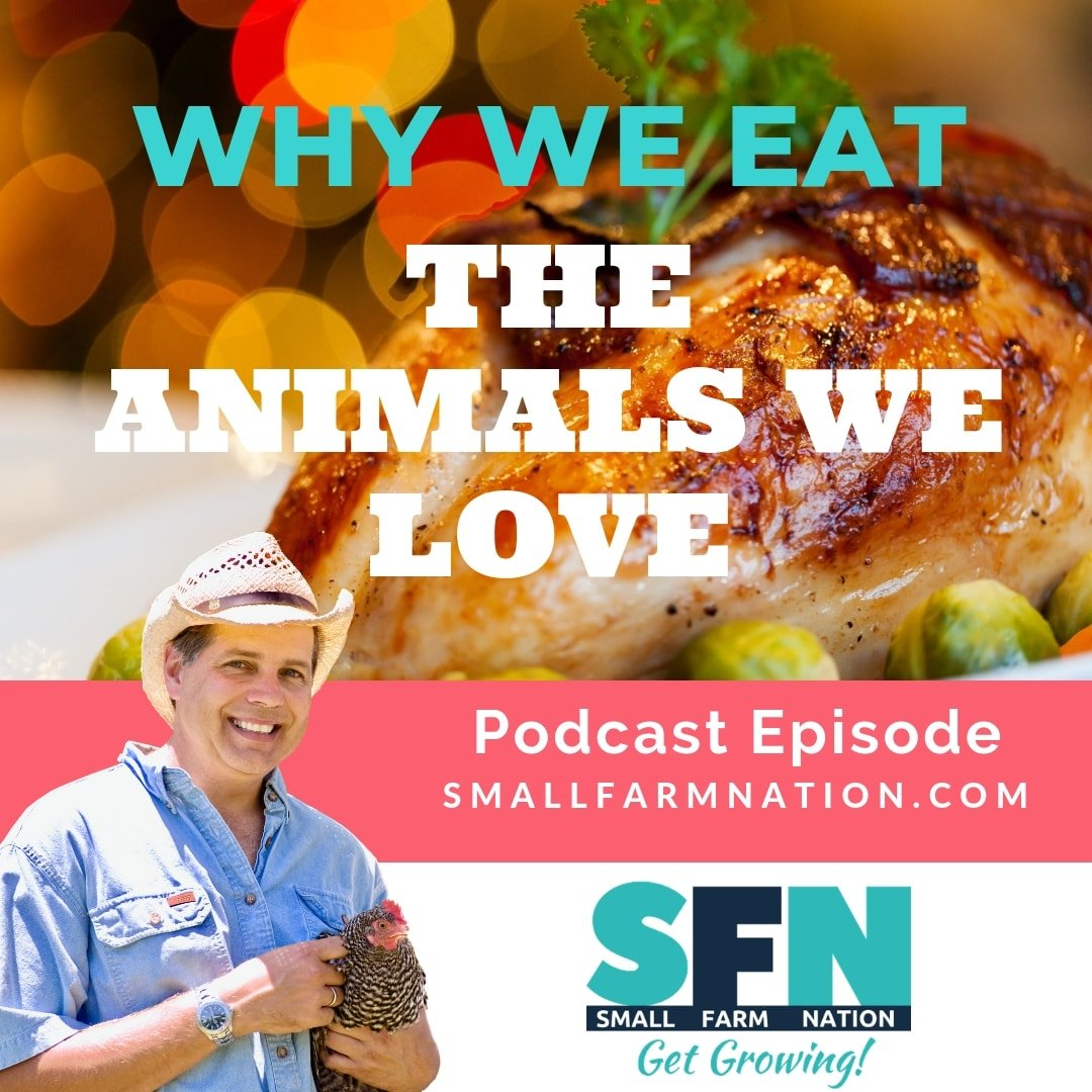 Why We Eat the Animals We Love | Homesteading | Farming