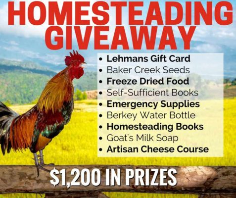 homesteading-giveaway-reduced