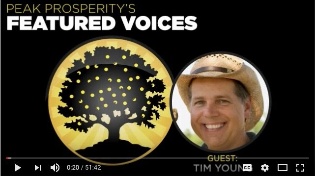 My Interview on Chris Martenson's Peak Prosperity Podcast