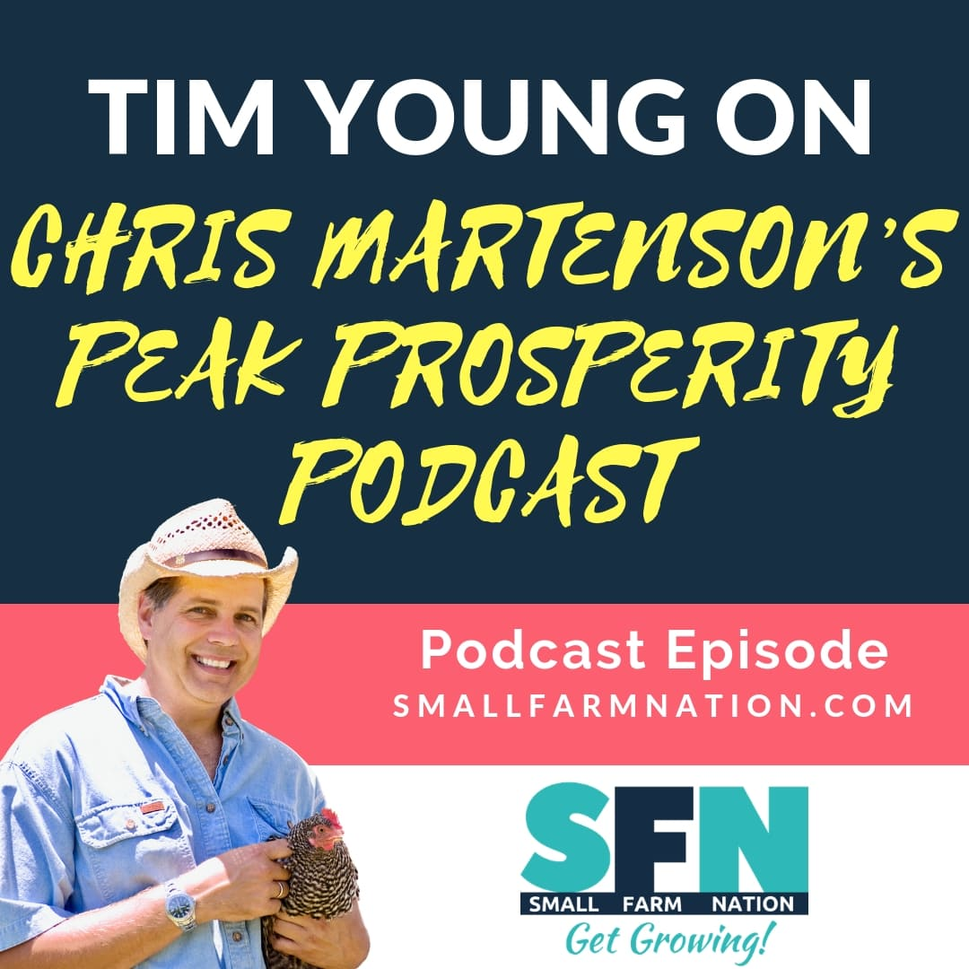 My Interview on Chris Martenson's Peak Prosperity Podcast