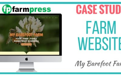 Farm Website Case Study – My Barefoot Farm