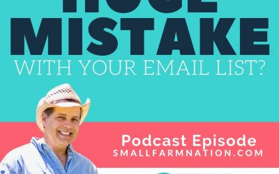 A huge email list mistake