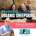 how to tan sheepskin