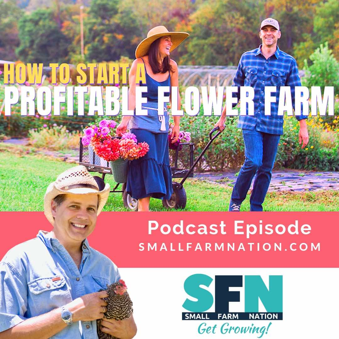 How to Start a Profitable Flower Farm