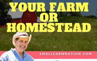 Critical Questions to Answer Before Buying Your Farm or Homestead: Farming Podcast