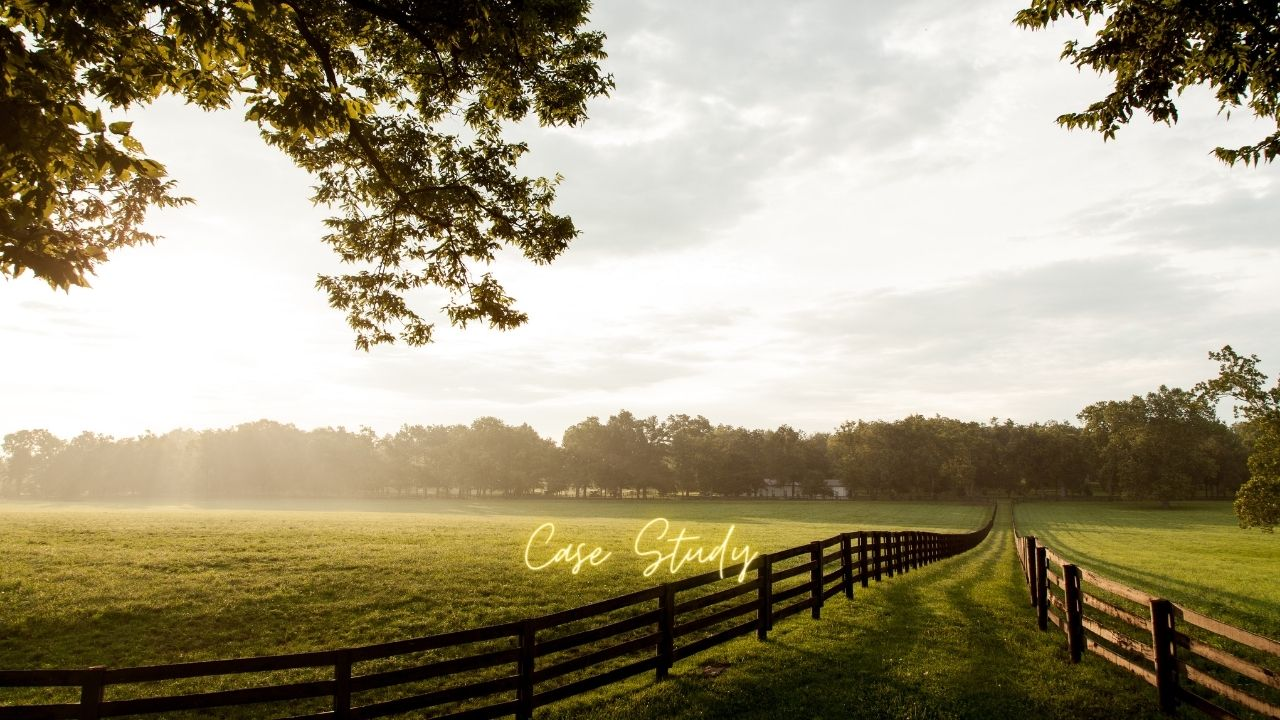 Thriving Farmer Case Study: Rolling Hills Cattle Company
