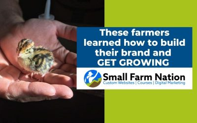 Thriving Farmer: Southwest Gamebirds