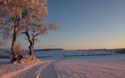7 Winter Farm Marketing Tips